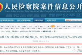 """【曝光】""""Plustoken""""操盘手陈波等6人被批准逮捕,开网无期"""