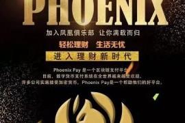【曝光】菲尼克斯(PHOENIX)虚假包装的国际项目,国人操盘,铁证在此