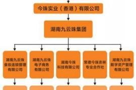 """【重磅】""""九云珠""""涉传销被罚1749万元 曾称打造1千个百万富翁"""