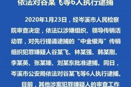 """【最新消息】""""中金银海""""主谋多数被抓,""""北京赛车""""停止返钱,""""顶盘团""""猫总跑路出国"""