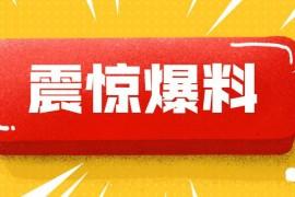 """【曝光】千钧一发:新瓶装旧酒""""GSC环保币""""涉嫌传销!"""