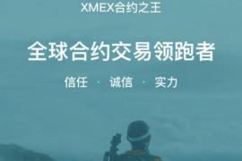 【曝光】惊天丑闻!合约的至暗时刻,XMEX和BMEX等数十家杀猪盘竟都为一个团伙作案!