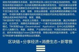 【曝光】警惕TBK记账系统陷阱,防止重蹈BBOSS记账系统覆辙!