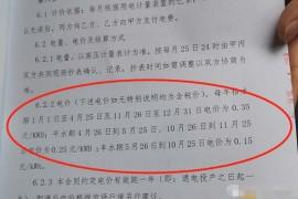 """【曝光】租用矿机两百天翻倍出局的""""T1矿场"""",真的是靠挖比特币来支付收益吗?"""