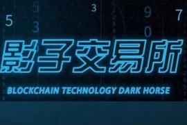 """【曝光】影子交易所DKC公链:一场国人操纵的""""暗网资金盘""""骗局!"""