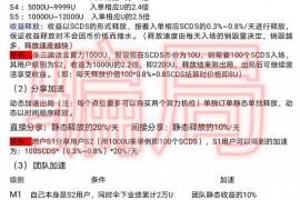 """【曝光】""""闲云公链SCDS""""资金盘的本质面纱,操盘手大言不惭要在香港上市?"""