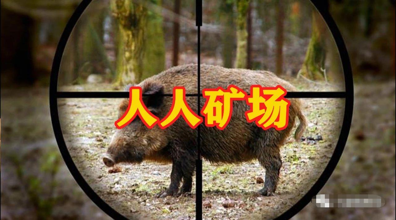 """【曝光】""""RRMine人人矿场""""操盘团队被曝出,起底运行多年未崩盘原因!"""